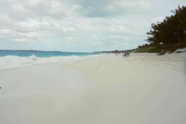 cabbage beach